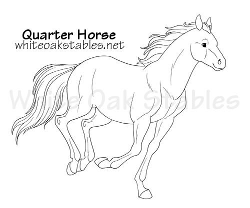 White oak stables realistic horse game for Quarter horse coloring pages
